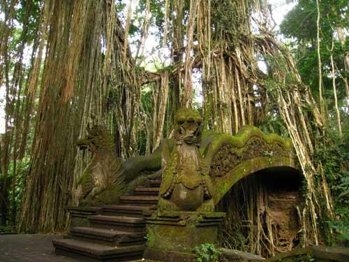 hutan monyet ubud bali